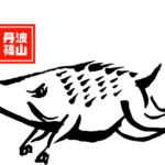 猪肉の通販「丹波篠山産」がおすすめな理由!